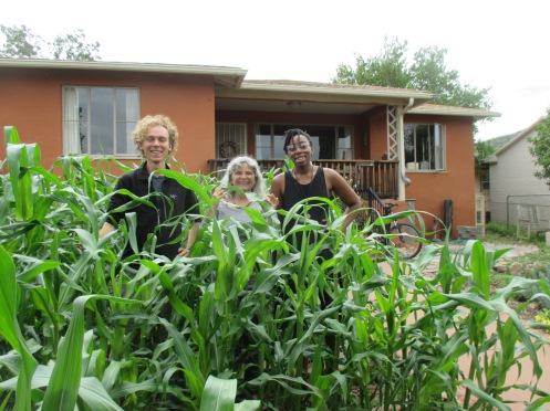 Alex from Michigan and Aneesah from Houston join Marcia in her front yard corn field. Summer interns learning and providing help with alternative building, organic garden/farm, land reclamation, rainwater collection, and tech support for upcoming crowdfunding campaign.