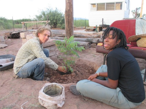 Alex and Aneesah planting an Arizona Black Walnut tree which will be irrigated with the gray water from the shower. Yay!